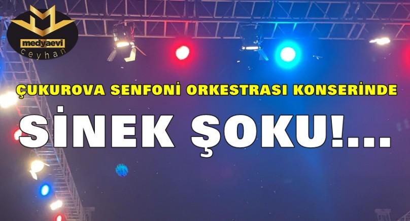Adana'da Sinekler Konser İptal ettirdi