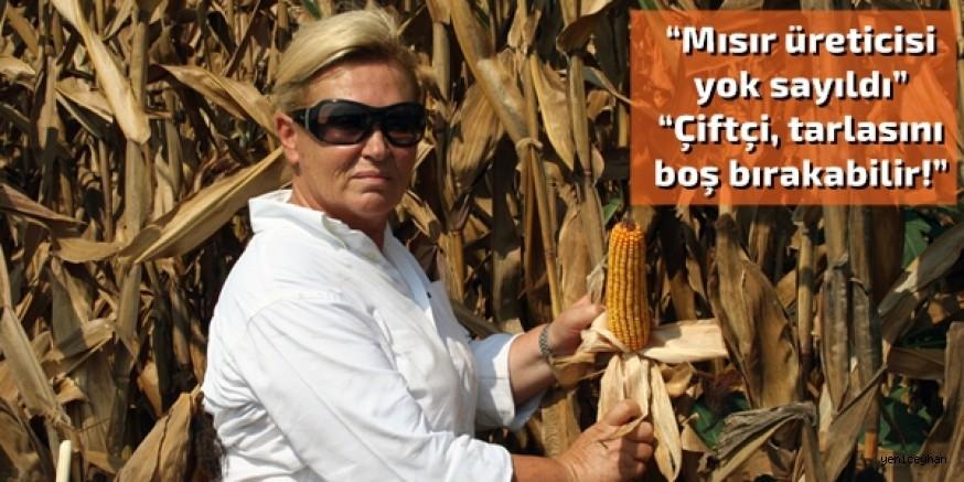 """""""Nişasta ve yem sanayinin mısıra büyük ihtiyacı var"""""""